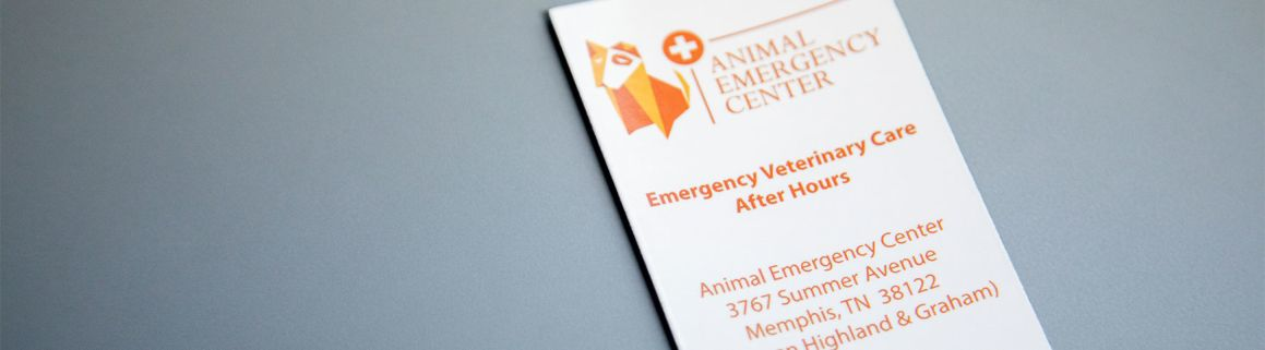 Referral Form | Animal Emergency Hospital | Memphis